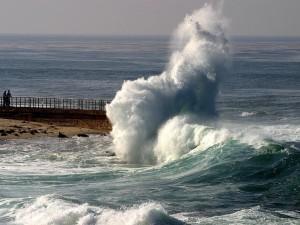 La Jolla Wave